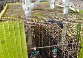 Tower Crane Base Inspection